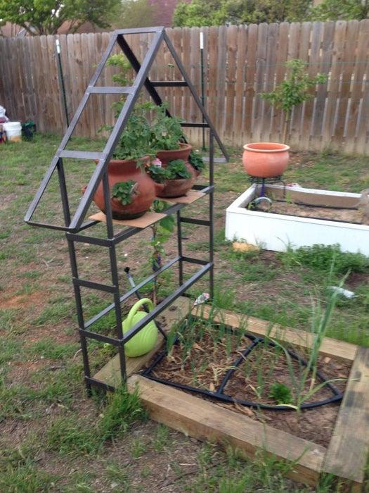 Metal Trellis for Garden VInes
